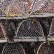Empty Crab Traps, St. John's — Stock Photo