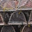 Empty Crab Traps, St. John's — Stock Photo