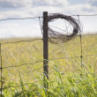 Role Of Wire On Fence Post — Stock Photo