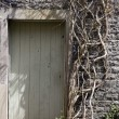 Stock Photo: Shed Door
