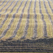 Harvest Lines In Cut Field, Alberta, Canada — Foto Stock