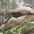 Rock Formation In The Forest — Stock Photo