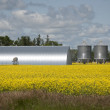 Stock Photo: Metallic Grain Storage Units, Manitoba, Canada