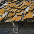 Stock Photo: Old Roof With Wooden Shingles Needing Repair