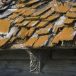 Old Roof With Wooden Shingles Needing Repair — Stock Photo