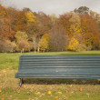 Bench In The Park In Autumn — Stockfoto