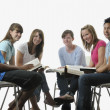 Stock Photo: Diverse Group Of Young Adult Christians
