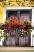 Red Flowers On A Balcony — Stock Photo