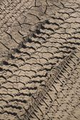 Tire Tracks In Dried And Cracked Mud — Stock Photo