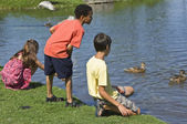 Children Looking At Ducks In The Water — Stock Photo