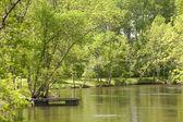 Lake Scenic, Lake Of The Woods, Ontario, Canada — Stock Photo