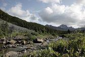 Back Country, Jasper National Park, Alberta, Canada — Stock Photo