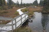 Boardwalk, Canmore, Alberta, Canada — Stock Photo