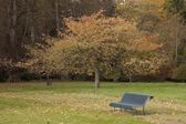 Bench In The Park In Autumn — Fotografia Stock