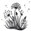 Dandelion, plant, flowers — Stock Vector