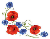 Poppies, cornflowers — Stock Vector