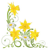 Daffodils, daisy, easter — Stock Vector