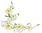 Daisy  border — Stock Vector