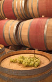 Wine barrels and wine grapes — Stock Photo