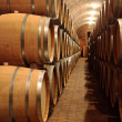 Wine barrels in a winery — Stock Photo