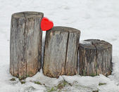 Red heart on trunks — Stock Photo