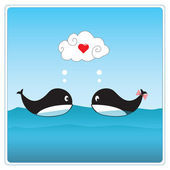 Cute whales in love. — Stock Photo