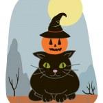 gato preto com abóbora — Vetorial Stock