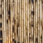 Постер, плакат: Dry Bamboo Columns