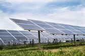 Solar cell panels farm — Stock Photo