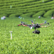 Rc helicopter flies over the tea plantation — Stock Photo #33672309