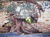 Ruin concrete wall with big tree root — Stock Photo