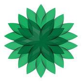 Wheel Flower isolated — Stock Vector