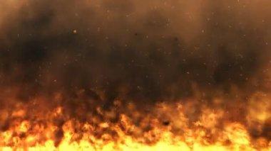 Raging Flames - loop — Stock Video