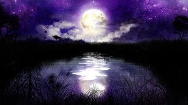 Noche mágica en el estanque-loop. mariposas de noche sobre el estanque de plata. gran luna saliendo detrás de las nubes y el agua refleja el cielo entero. parpadea de estrellas en el cielo. — Vídeo de Stock