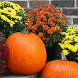Two orange pumpkins with chrysanthemums — Stock Photo #32420713