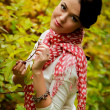 Stok fotoğraf: The beautiful girl in the autumn forest