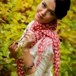 Stockfoto: The beautiful girl in the autumn forest