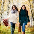Young girls walking in the autumn park — Stock Photo