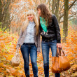 Young girls in the autumn park — Stock Photo