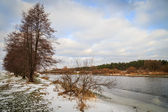 Winter forest river with trees — Foto Stock