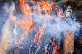Burning fire wood — Stock Photo
