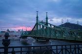 Liberty Bridge in the evening — Stock Photo