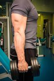 Man training with dumbbells — Foto de Stock