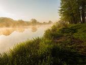 River at sunrise — Stock Photo