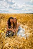 Meisjes in een tarweveld — Stockfoto