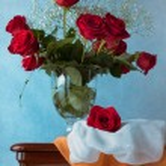 Rosas — Stock Photo