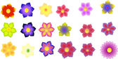 Illustration of colorful flowers isolated on a white background — Stock Photo