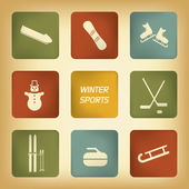 Winter sports icons set in various vintage colors suitable for infographics or web design — Stock vektor