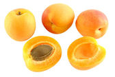 Four apricots - one cut - optional — Stock Photo