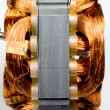 Постер, плакат: Copper Coils Found in Electric Motor